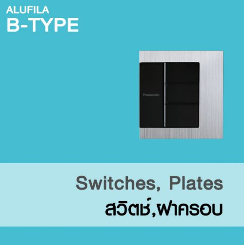 SWITCHES-PLATES ( BS-TYPE )