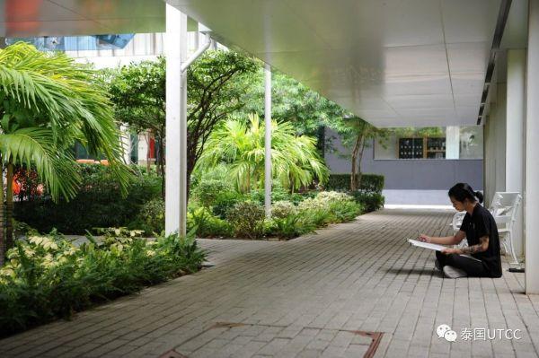 泰国商会大学校园里的绿地